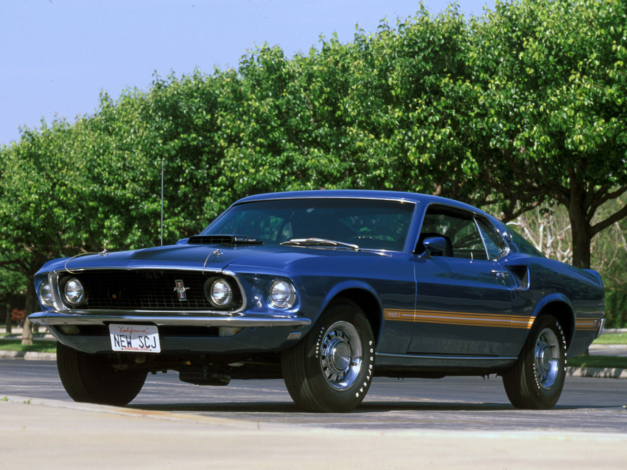 1969 ford mustang mach 1 pictures page 1 fast autos net image